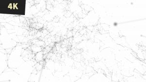 Abstract business background newsroom geometric futuristic field white with black lines 1 img 4K